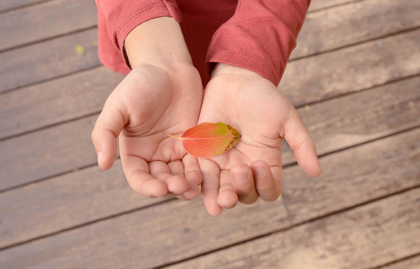 Asesoramiento e intervención familiar Re·Cordis